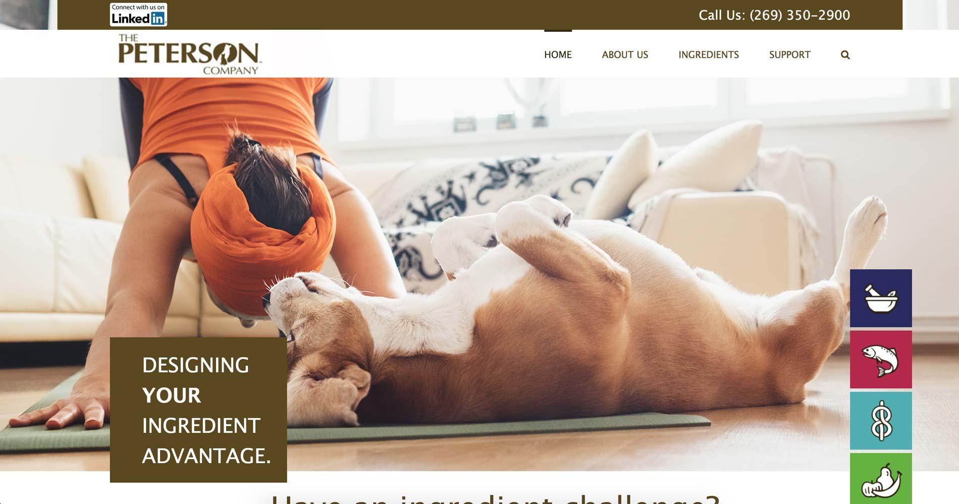 website design for pet industry