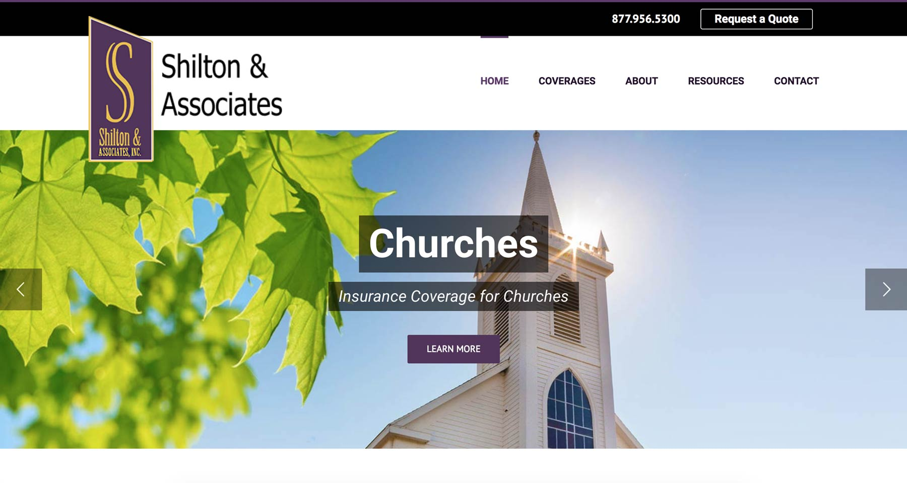 insurance website design example